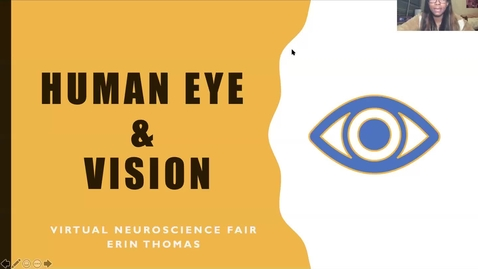 Thumbnail for entry Human Eye & Vision