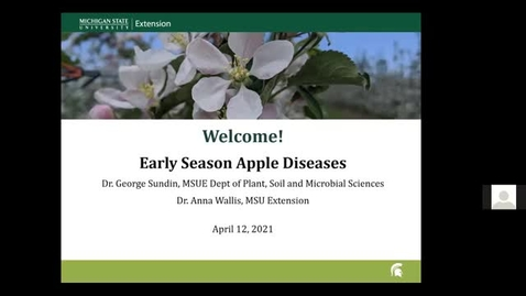 Thumbnail for entry Early Season Apple Diseases 2021