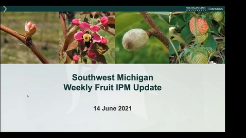 Thumbnail for entry MSU SW Fruit Update  June 14 2021