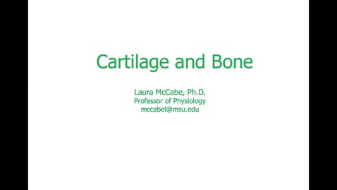 Thumbnail for entry PSL539 (010) Cartilage and Bone 1