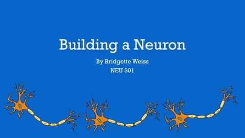 Thumbnail for entry Building a Neuron