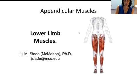Thumbnail for entry LL Muscles Part I