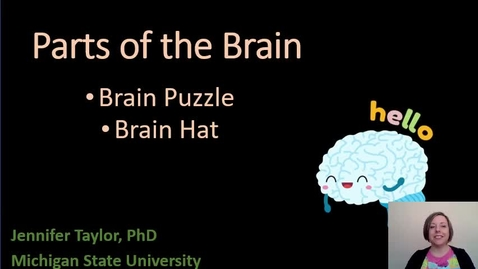 Thumbnail for entry Brain Puzzle and Hat!