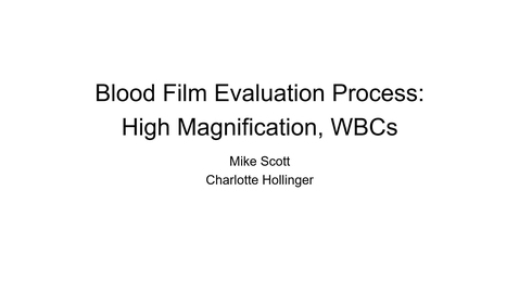 Thumbnail for entry VM 523-Blood smear evaluation, high mag WBCs