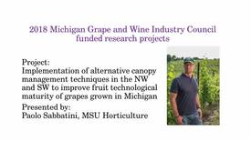 Thumbnail for entry Implementation of alternative canopy management techniques in the NW and SW to improve fruit technological maturity of grapes grown in Michigan