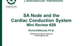 Thumbnail for entry CPR Intersession: SA Node and the Cardiac Conduction System