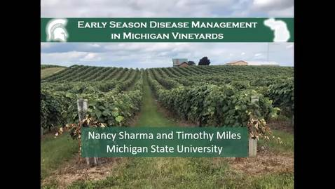 Thumbnail for entry Grape Kickoff 2020 - Early season disease management in Michigan vineyards