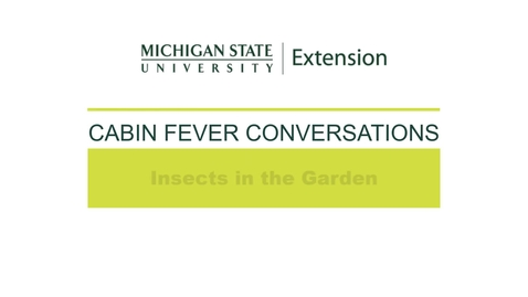 Thumbnail for entry Cabin Fever Conversations 2021: Insects in the Garden with David Lowenstein