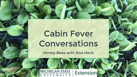 Thumbnail for entry Cabin Fever Conversations - Honeybees with Ana Heck