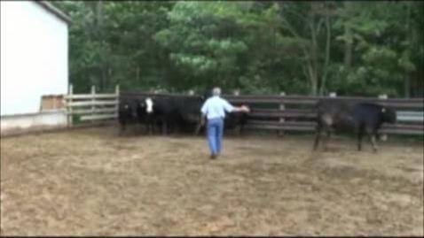 Thumbnail for entry VM 515-Ben Bartlett - Low Stress Animal Handling - 4