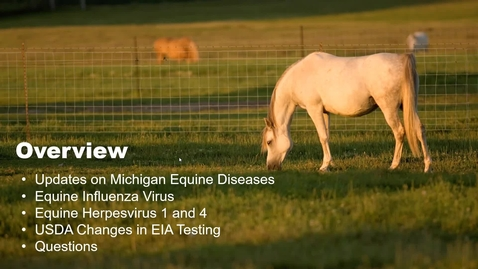 Thumbnail for entry Regulatory and Diagnostic Updates for Infectious Equine Diseases: EIA, EHV, and EIV | 3.24.2021