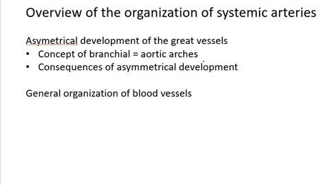 Thumbnail for entry VM 518-Development of great vessels