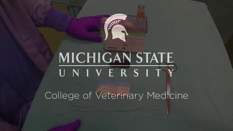 Thumbnail for entry VM 580-Threading the Needle