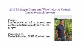 Thumbnail for entry Leaf removal: A tool to improve crop control and fruit quality in vinifera grapes by Paolo Sabbatini