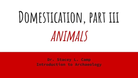 Thumbnail for entry Domestication Part III - Animals