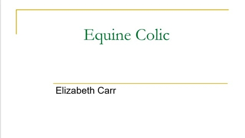 Thumbnail for entry Evaluation for Equine Colic