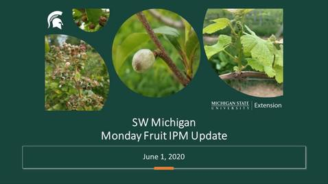 Thumbnail for entry IPM Meeting June 1 2020