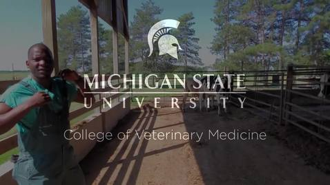 Thumbnail for entry VM 515-Cattle Physical Exam