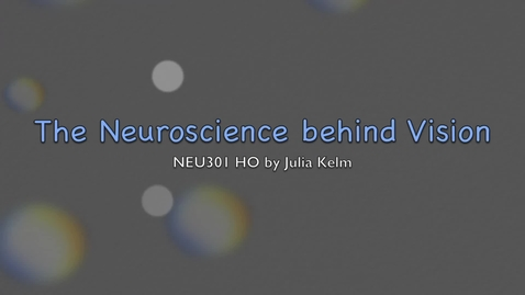 Thumbnail for entry The Neuroscience behind Vision