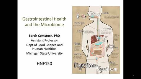 Thumbnail for entry Mini Lecture 2.3 - GI Health