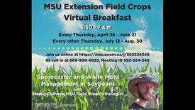 Thumbnail for entry Virtual Breakfast 7/12/2018: Martin Chilvers, Sporecaster and White Mold Management in Soybeans