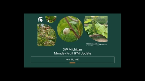 Thumbnail for entry IPM Fruit Meeting June 29 2020