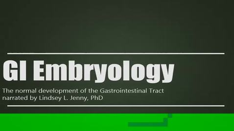 Thumbnail for entry The Development of the Gastrointestinal Tract