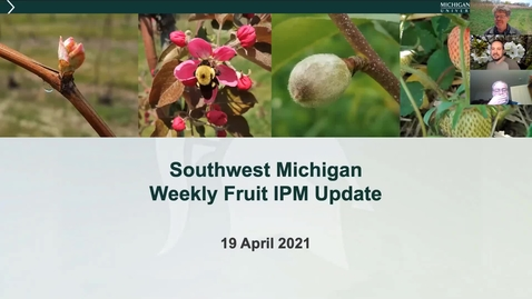 Thumbnail for entry MSU SW Michigan Fruit IPM Update April 19, 2021