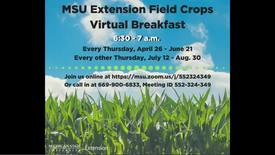 Thumbnail for entry Virtual Breakfast 4/26/18: Early-Season Weed Control