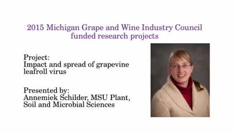 Thumbnail for entry Impact and spread of grapevine leafroll virus by Annemiek Schilder