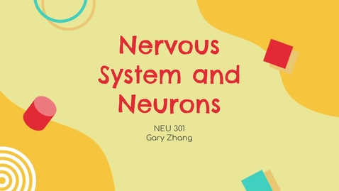 Thumbnail for entry Nervous System and Neurons