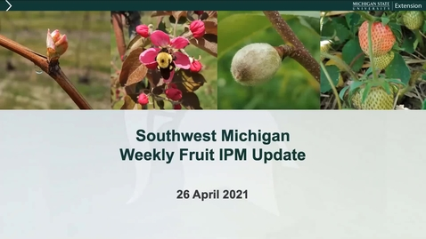 Thumbnail for entry SW Michigan  MSUE Fruit IPM Update April 26, 2021