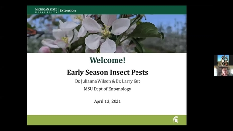 Thumbnail for entry Early Season Apple Insect Pests 2021