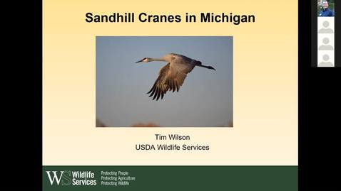 Thumbnail for entry Wildlife Management and Crop Damage Webinar 3-22-19 - USDA's Tim Wilson on Crane Management