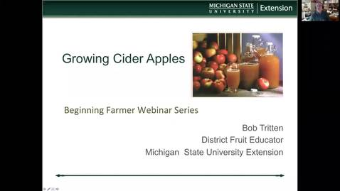 Thumbnail for entry Growing cider apples