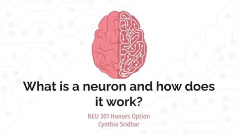 Thumbnail for entry CynthiaSridhar-NEU 301 Honors Option