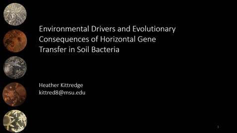 Thumbnail for entry Environmental Drivers and Evolutionary Consequences of Horizontal Gene Transfer in Soil Bacteria