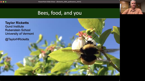 Thumbnail for entry Bees, food, and you