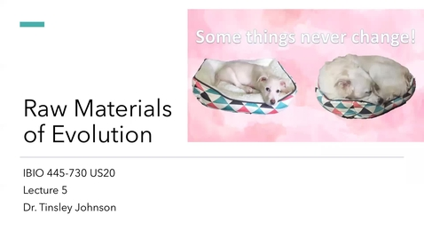 Thumbnail for entry Lecture 5_Raw Materials_Week 3