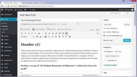 Thumbnail for entry Wordpress Tutorial: Text Editor