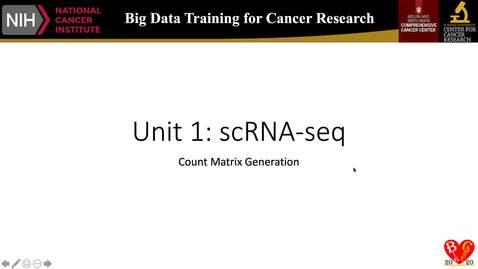 5_RNA-seq_countMatrixGeneration