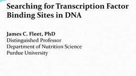 Thumbnail for entry Transcription Factor Binding Site Prediction in DNA