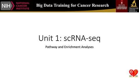 7_RNA-seq_enrichment_Analyses