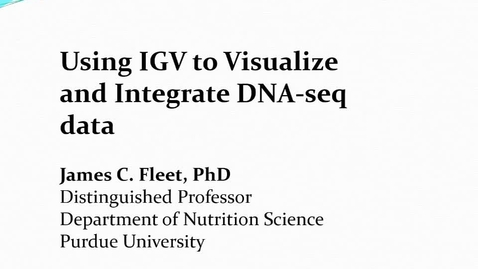 Thumbnail for entry Using IGV to visualize DNA-seq data